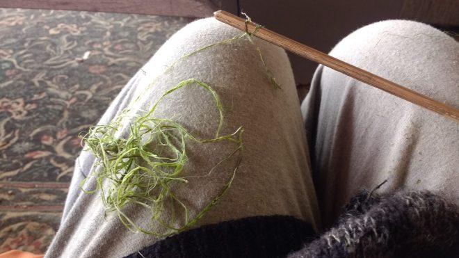 fibres une orties