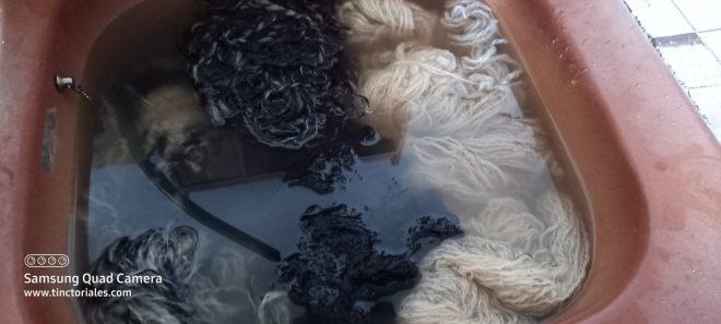 lavage lessive de lierre pour écharpe