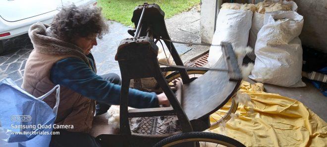 Cardage pour matelas de laine