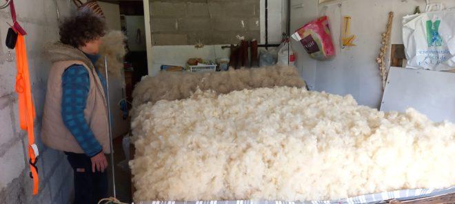 matelas de laine - couche de crin
