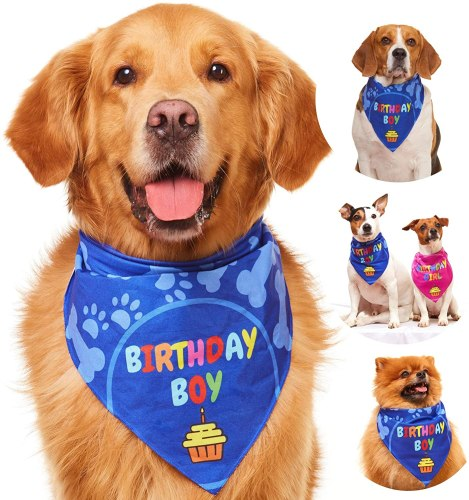 Odi Style Dog Bandana for Dog