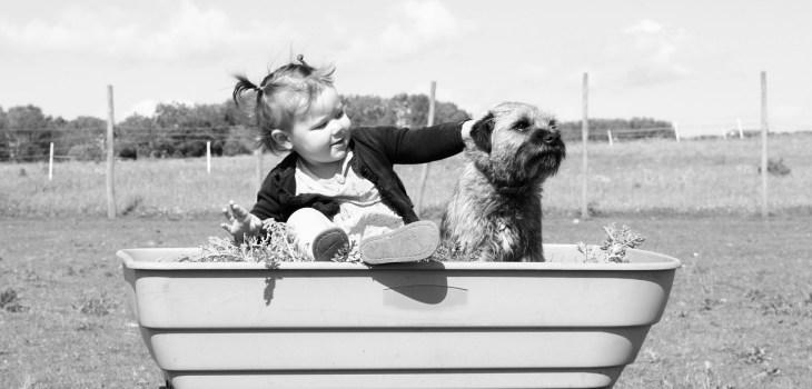 toddler, dog, black and white-1208260.jpg