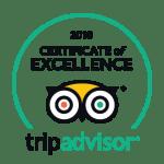 Tripadvisor excellence award badge