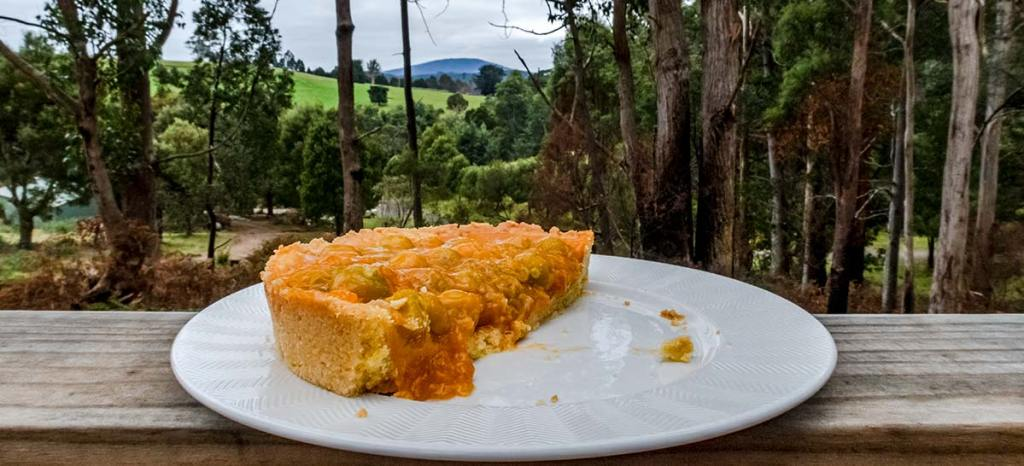 A cape gooseberry tart cut in half sitting on a white plate. In the background is the view of the mountains from the balcony of The Barn at Tin Dragon Cottages.