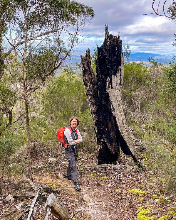 Woman wearing a red day-pack is standing on the trail leading up to Cube Rock and there is a burnt out old tree behind her and mountains in the distance - from our road trip in Tasmania