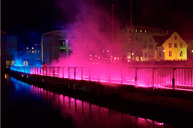 Pink-enchantment–tine-bech-studio5