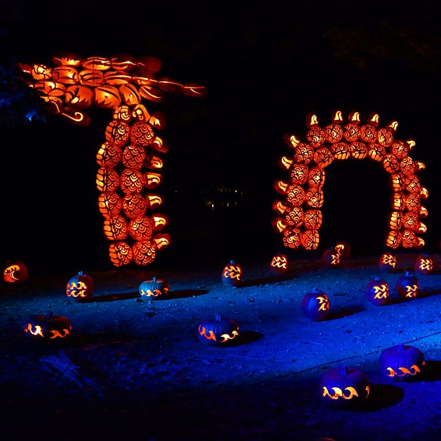 The Great Jack O Lantern Blaze,