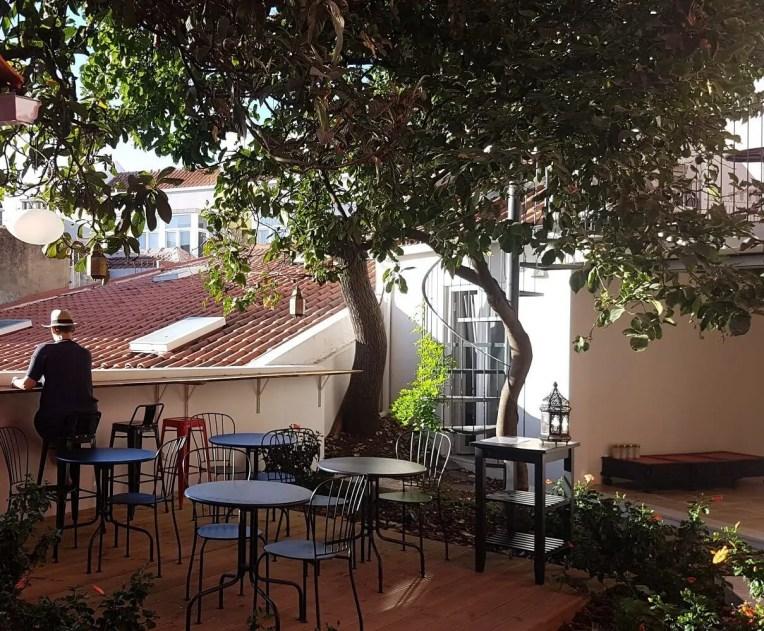Tings Garden (8)
