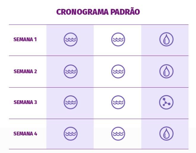 cronograma_padrao