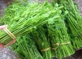 Tổng hợp những món ăn ngon về đặc sản rau rừng của người Thái