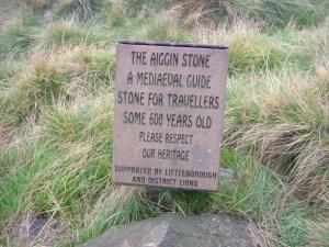 9 higgin stone