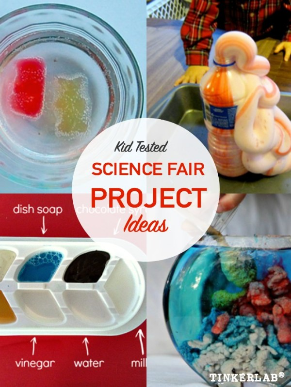 Science Fair Project Ideas   TinkerLab