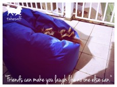 tinkerwolf dog photo quotes 57 Friends can make you laugh