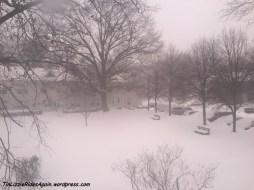 Snowzilla 1
