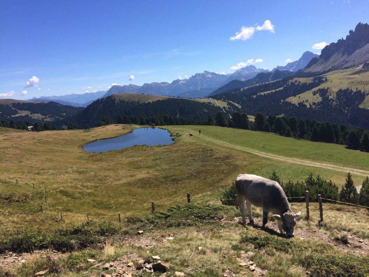 MTB-Trip Dolomiten / Wackerersee