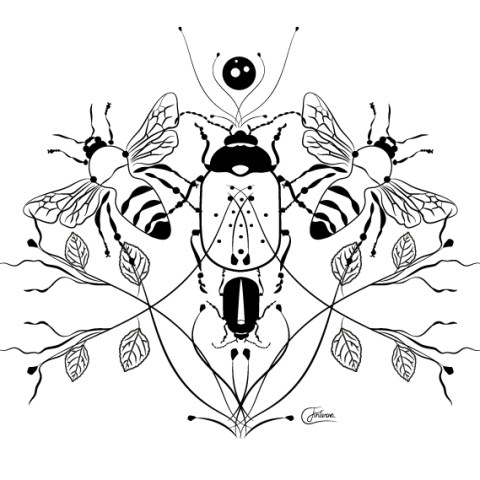 Lineart illustration - Swedish insects