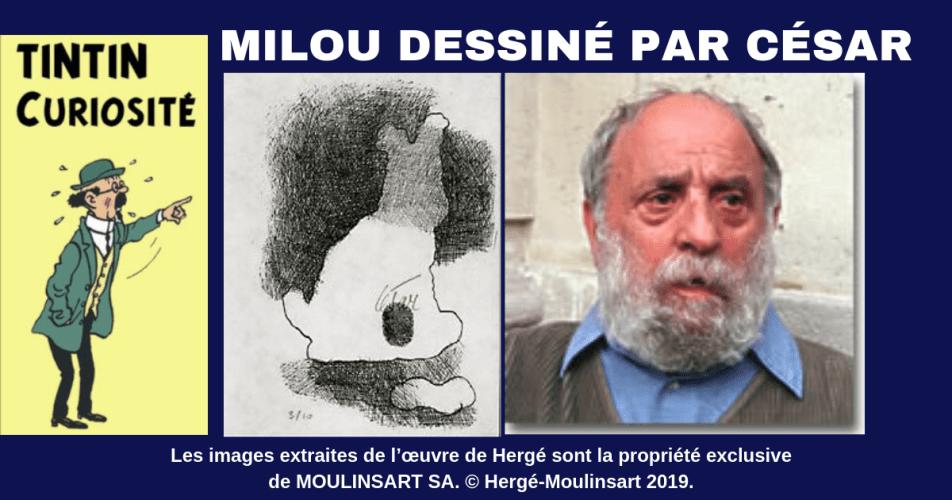 TINTIN : DESSIN ORIGINAL DE MILOU SIGNÉ PAR LE SCULPTEUR CÉSAR (1993)