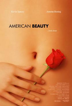 american_beauty11
