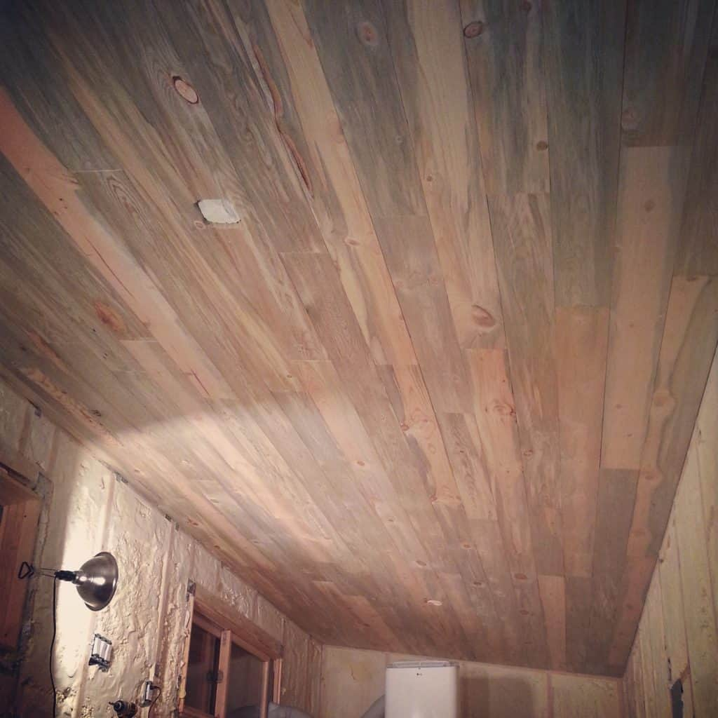 Beautiful Blue Stain Beetle Kill Pine Ceiling And Walls