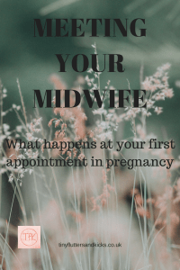 Meeting your midwife