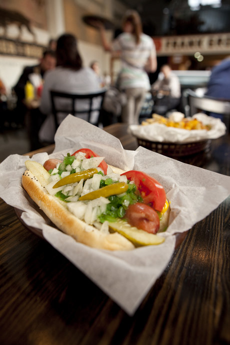Chicago dog far from it's home