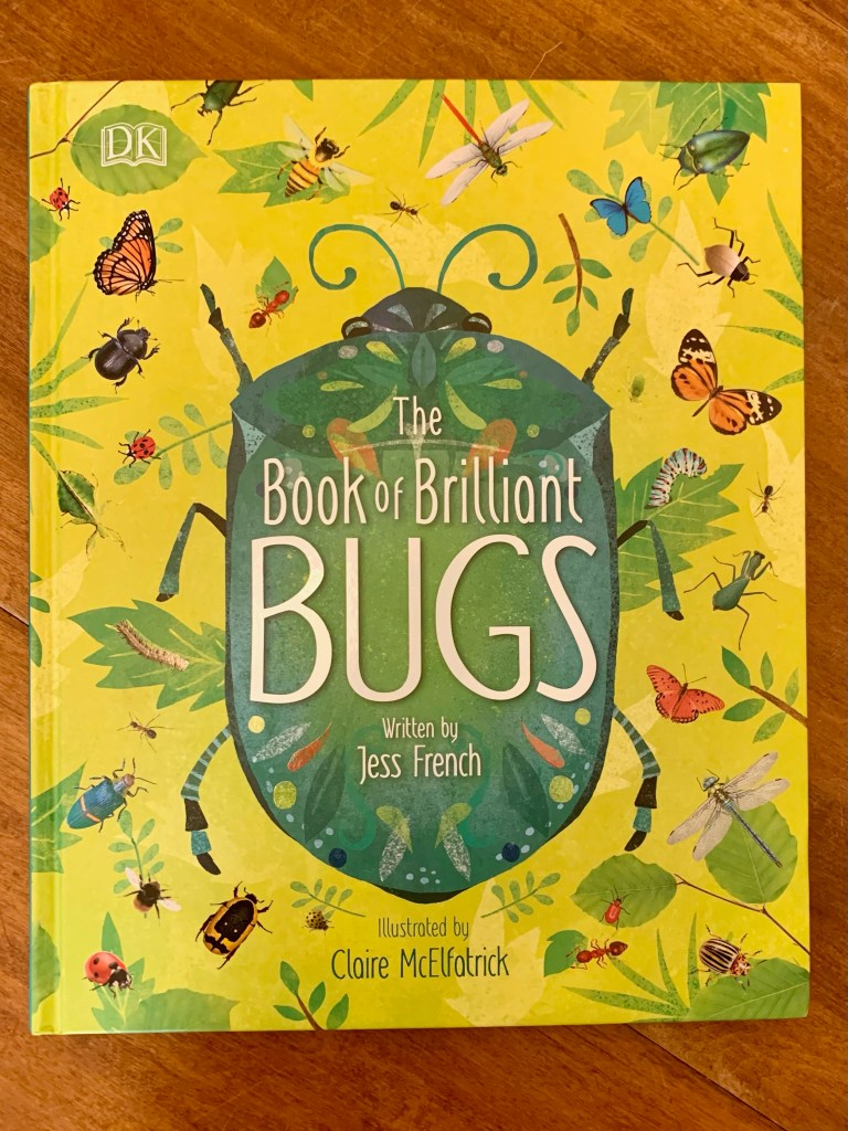 the book of brilliant bugs - homeschool curriculum