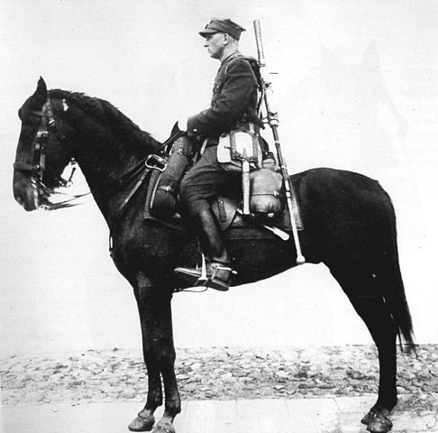 A Polish cavalryman with an anti-tank rifle (and a sword!). Which one do you think he would have used to fight tanks?