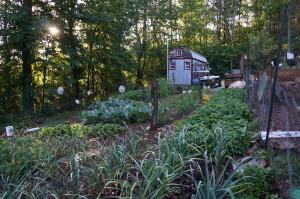 Tiny House Family Garden