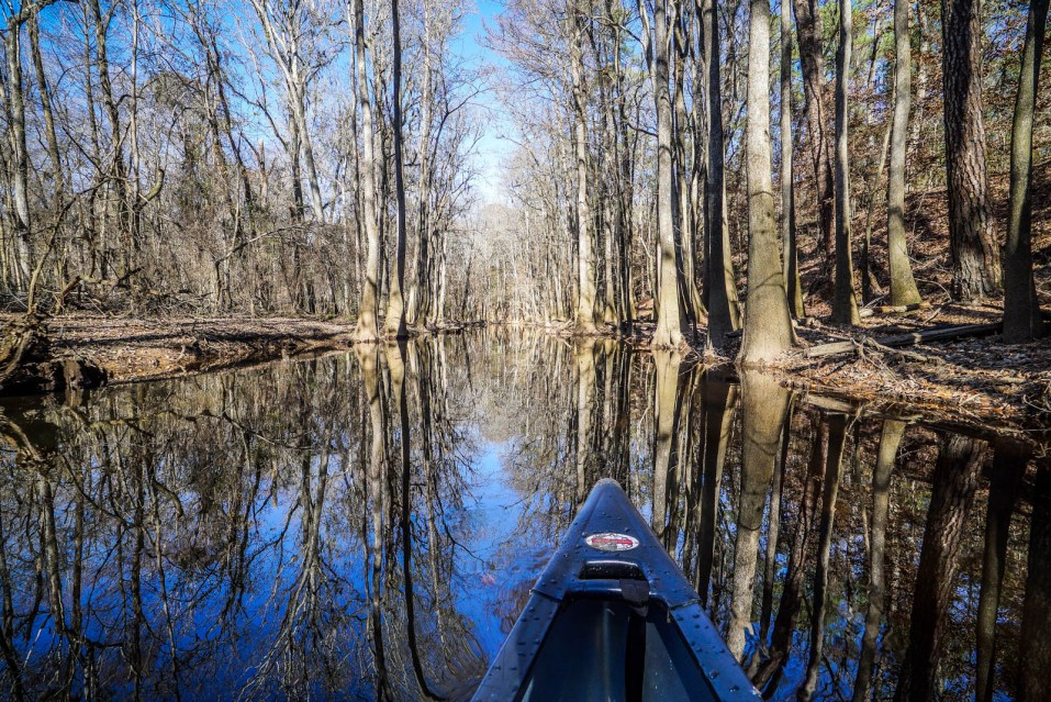 THGJ Congaree National Park Canoeing - 0012