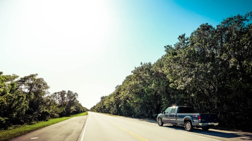 THGJ Everglades - 0005