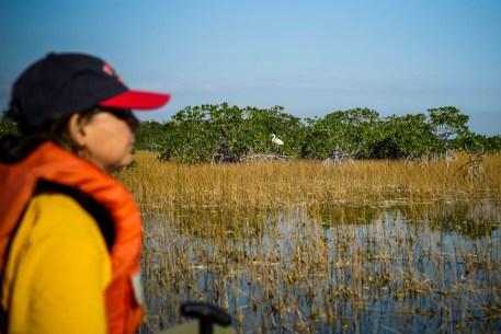 THGJ Everglades 9 Mile Pond - 0006