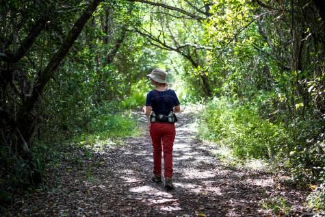 THGJ Everglades Snake Bight Trail - 0004