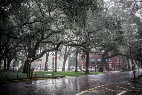 THGJ Savannah Rain - 0001