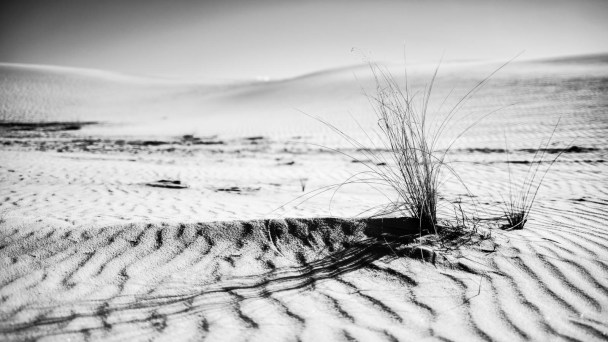 White Sands National Monument - 0017
