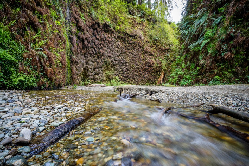 Fern Canyon Hike - 0003