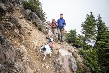 Mt Ellinor Hike And Mountain Goats - 0005