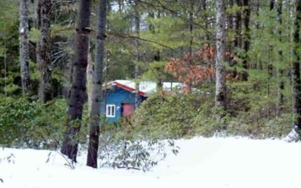 140-sq-ft-tiny-cabin-with-land-for-sale-0003
