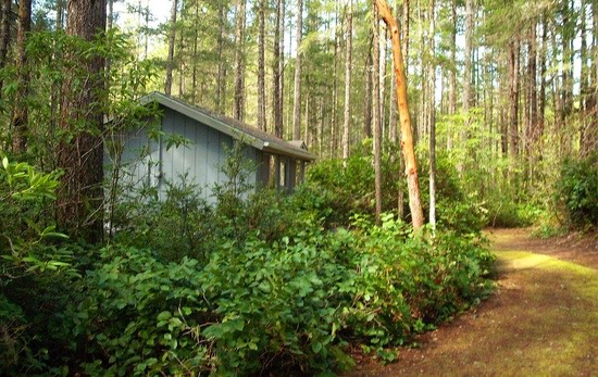 320 sf cottage for sale 0015