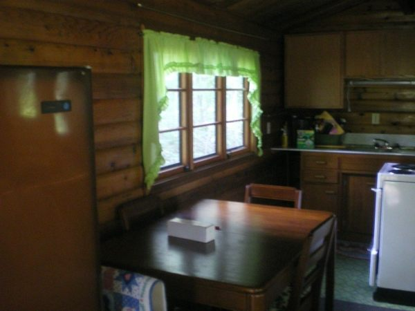 384-sq-ft-tiny-cabin-for-sale-0004