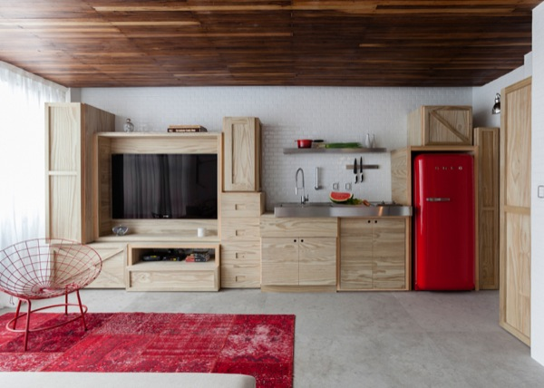 387-sq-ft-2-story-micro-apartment-in-brazil-002