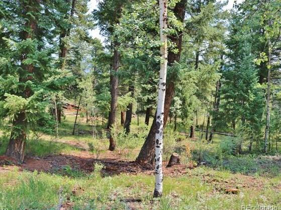 572 Sq. Ft. Colorado Mountain Cabin