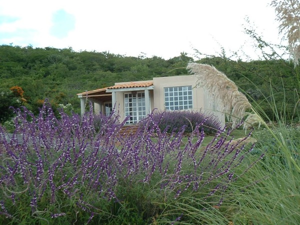 600 Sq. Ft. House on Farm in Mexico-003