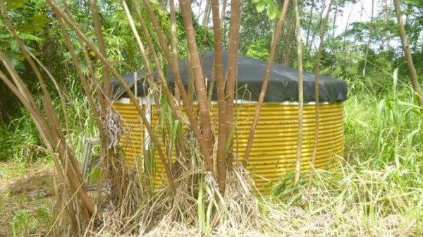 707SF Yurt For Sale in Hawaii on 1 Acre 0014