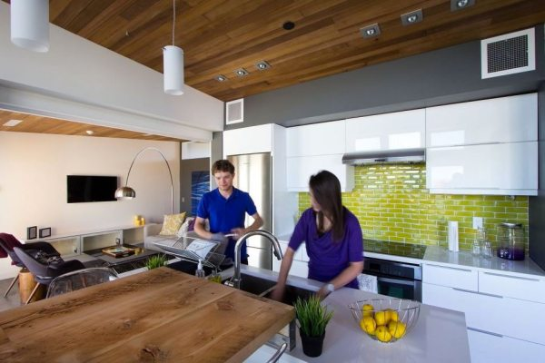 915-sq-ft-small-house-for-roommates-solar-decathlon-2013-borealis-0010