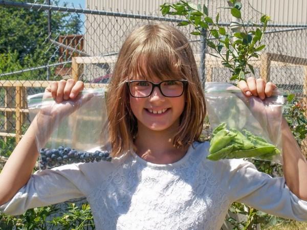 Hailey's Harvest