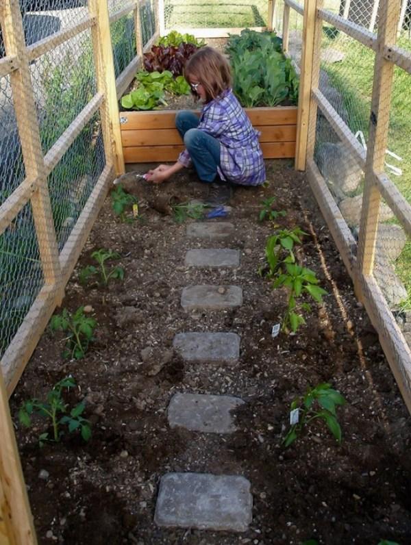 Hailey's garden