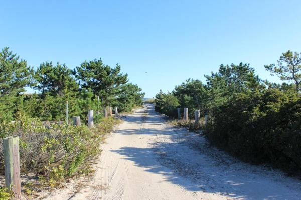 Beach Plum Cottage in Plymouth, MA