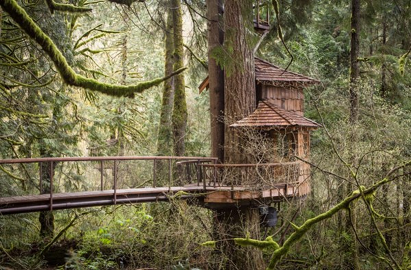 Burl Treehouse at TreeHouse Point 001