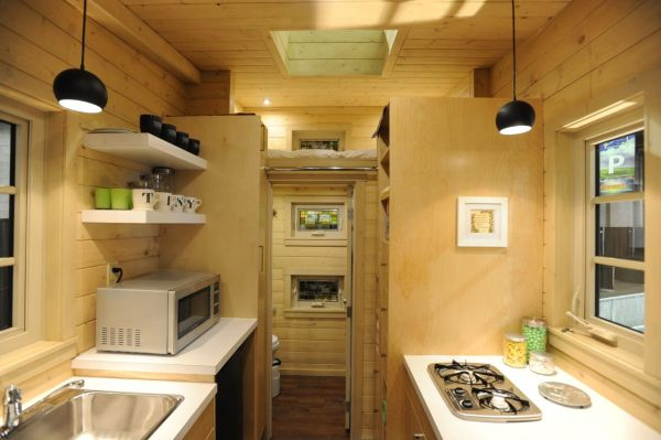 Contemporary Dragonfly Tiny House For Sale 007