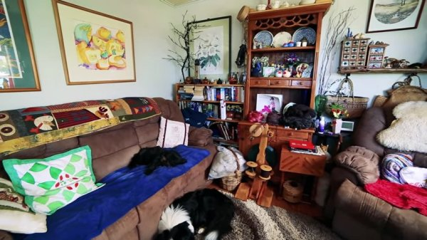 Couple go from Nomadic Converted Bus Living to Micro Homestead Life in New Zealand 006c